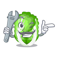 Mechanic chinese cabbage vegetable isolated on vector