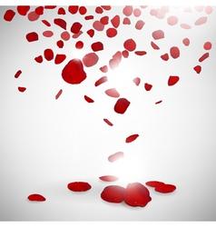 Background rose petals vector