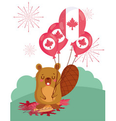 Beaver with canadian balloons design vector