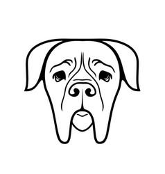 boerboel dog vector image