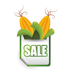 Corn sale shop market label vector