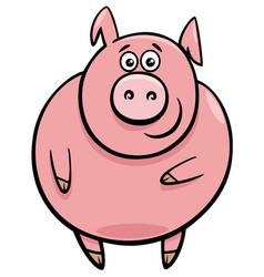 cute pig character cartoon vector image