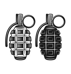 grenade two style black vector image