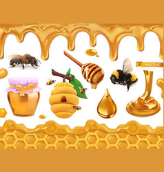 Honey 3d realistic set bee beehive honeycomb drop vector
