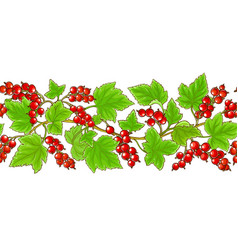 Red currant pattern on white background vector