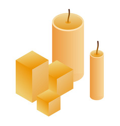 wax candle icon isometric style vector image