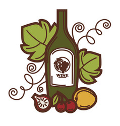 Wine glass and grape vine fruit harvest vector