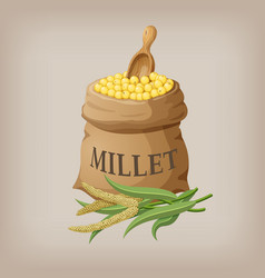 An image of raw yellow millets in a bag vector
