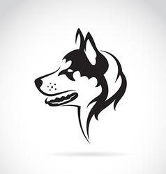 image of a dog siberian husky vector image