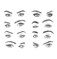 Female eyes glamour eye lashes woman vector