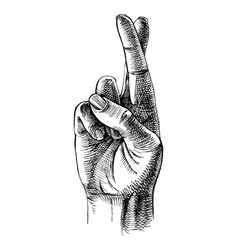 fingers crossed sketch vector image