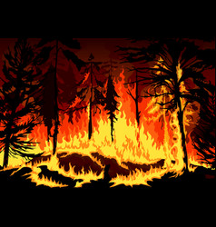 Forest fire wildfire disaster with burning trees vector