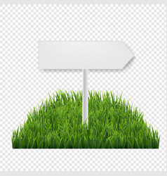 Square green grass field transparent background vector