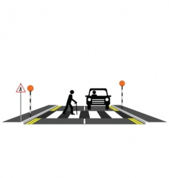 Zebra crossing oap vector