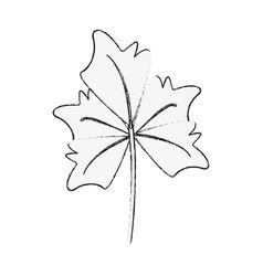 autumn leaf symbol vector image