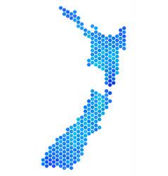 blue hexagon new zealand map vector image
