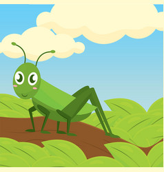 Happy cricket cartoon vector