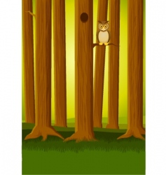 Owl in the forest vector