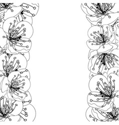 plum blossom flower border outline vector image