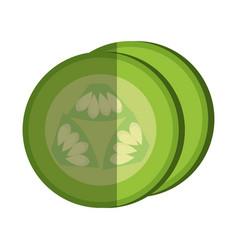 sliced cucumber vegetable healthy food vector image