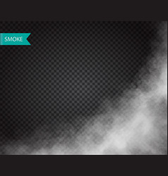Smoke or cloud effect on transparent background vector