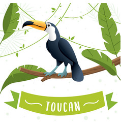 toucan bird cartoon character vector image
