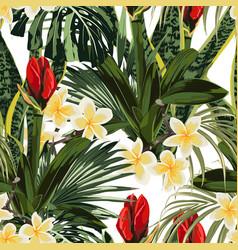 tropical lilies bud plumeria flowers seamless vector image