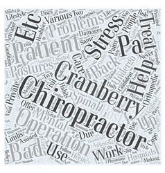 Chiropractor cranberry twp pa word cloud concept vector