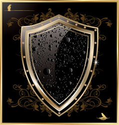 Shield with black water drops vector image vector image