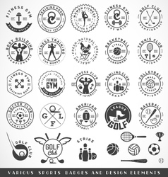 Sports Labels in Vintage Style vector image