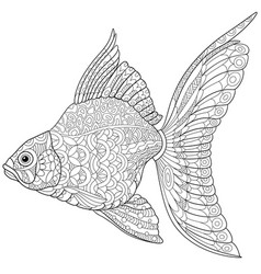 Goldfish adult coloring page vector
