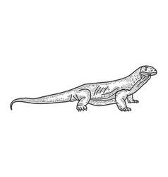 Monitor lizard varanus sketch vector
