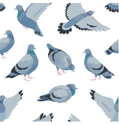 pigeons flat seamless pattern cartoon grey vector image