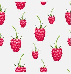 Seamless pattern raspberries autumn fruit patt vector