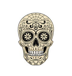 stylized decorative sugar skull on white vector image
