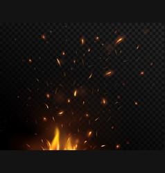 Bonfire sparks flying up burning fire vector