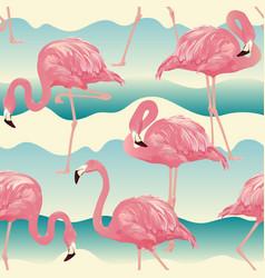 tropical bird flamingo vector image