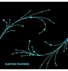 Wire grid feathers made of connected dots vector image vector image