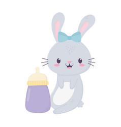 Bashower little bunny bottle cartoon decoration vector