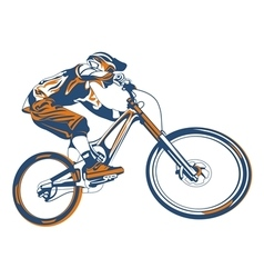 Bike mountain vector
