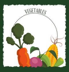 vegetables fresh nutrition diet image vector image
