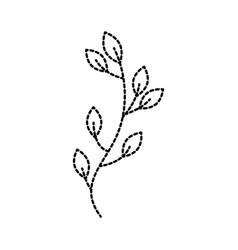 autumn tree branch leaves foliage botanical image vector image