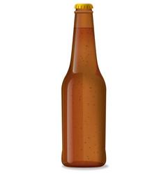 brown bottle of beer vector image vector image