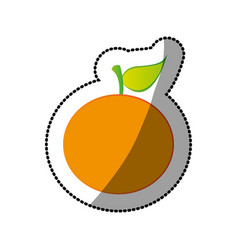 color orange fruit icon stock vector image
