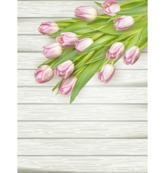 Fresh pink tulips EPS 10 vector image
