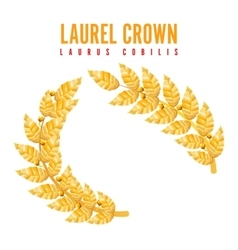 Laurel crown greek wreath with golden leaves vector