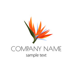 Logo with strelizia simple sign for flower vector
