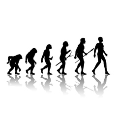 Man evolution vector image