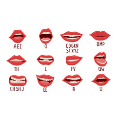 mouth animation alphabet pronunciation lips vector image