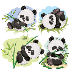 playful panda bear baby with bamboo cartoon vector image